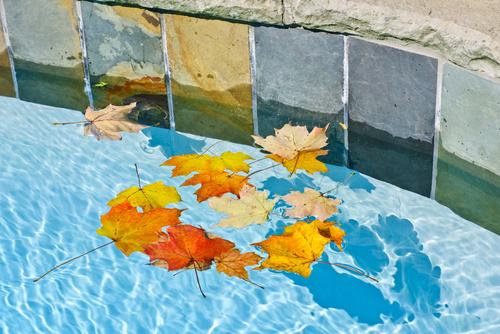 Pool Cleaning Service | Largo | Triangle Pool Service