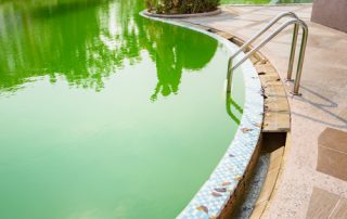 Pool Cleaning Service   Largo   Triangle Pool Service