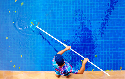 Pool Cleaning Service | Palm Harbor | Triangle Pool Service