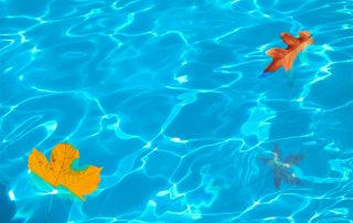 Pool Cleaning Service | Tampa | Triangle Pool Service