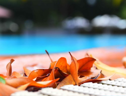 3 Benefits of Professional Pool Cleaning