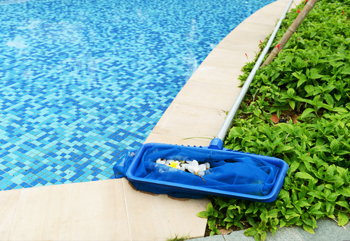 Triangle S Pool Service And Swimming Pool Repair