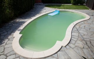 Swimming Pool Cleaning | Palm Harbor | Triangle Pool Service